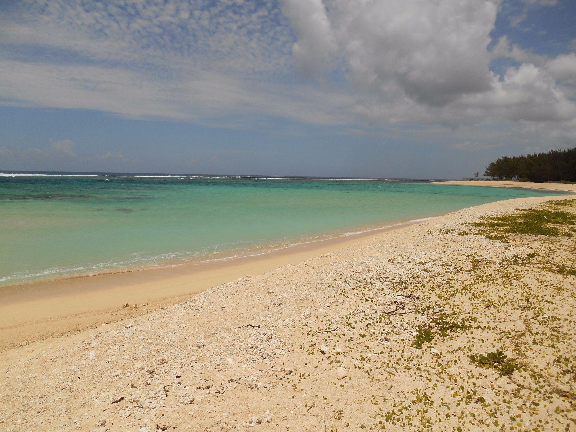 Terrain à 5 min à pied de la plage de Riambel