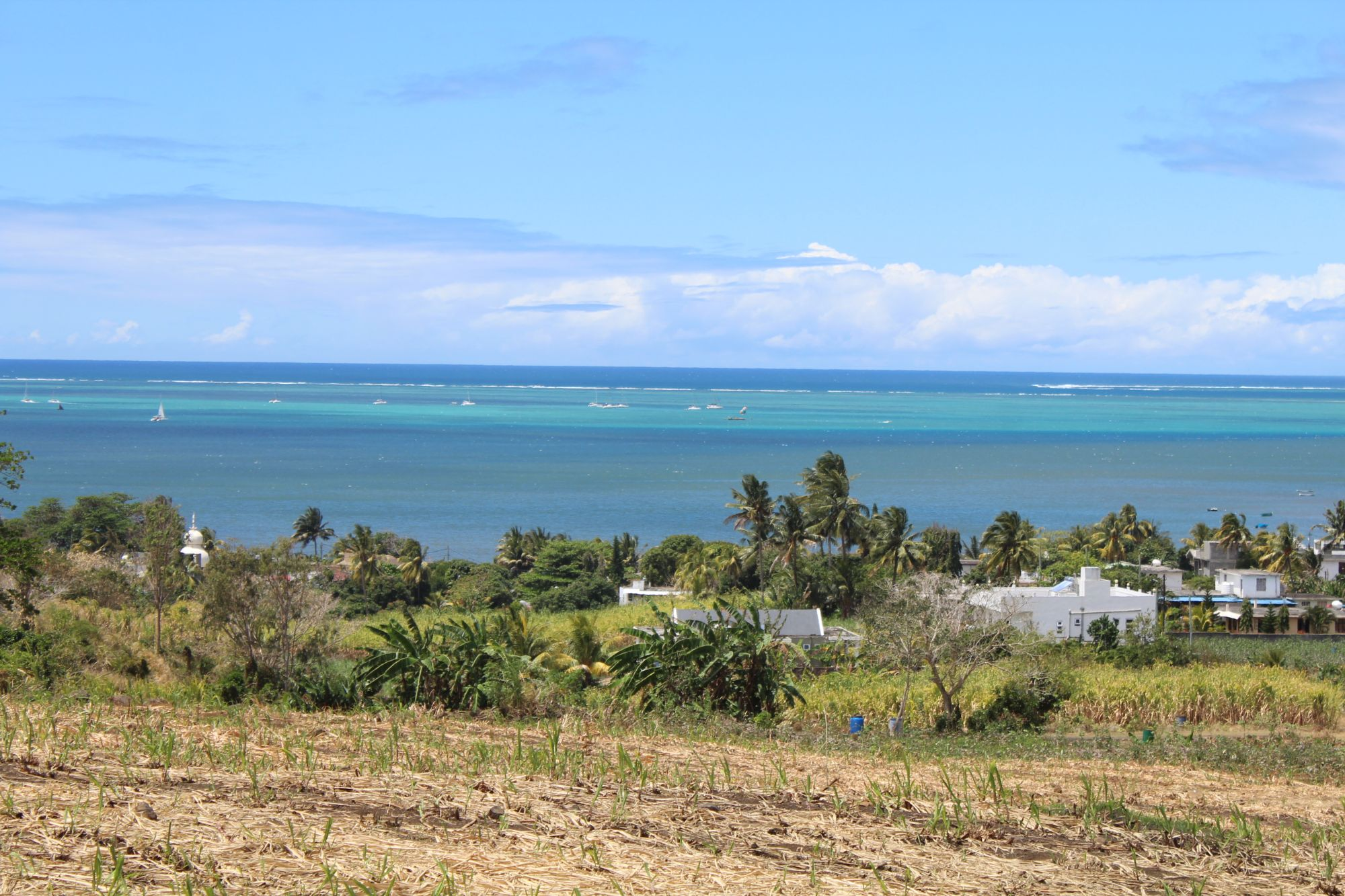 Très beau terrain agricole de 1 arpent 92 se situant à Quatre Soeurs avec magnifique vue mer.